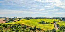 Les meilleurs vignobles et établissements vinicoles à visiter en Toscane